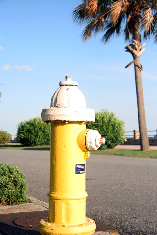 One of Charleston Water System's 9,000 fire hydrants